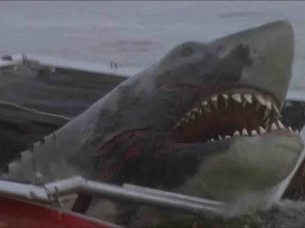 Ann Dusenberry Jaws 2